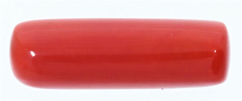 Original Red Coral ( Munga or Moonga ) - 8.25 Carat Weight - Origin Italy