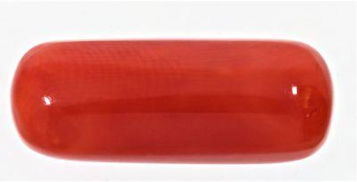 Original Red Coral ( Moonga ) - 10.50 Carat Weight - Origin Italy