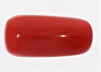 Natural Red Coral ( Munga) - 8.00 Carat Weight - Origin Italy