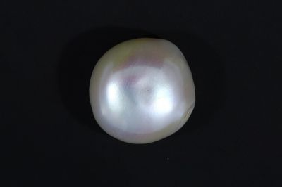 White Pearl (Moti)